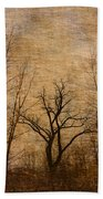 Winter Trees In The Bottomlands 2 Beach Towel