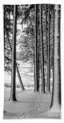 Winter Walk Beach Towel