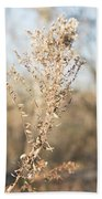 Winter Weeds Beach Towel