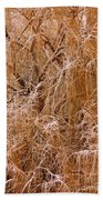 Winter Willow Branches Beach Towel