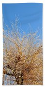 Winter Willow Beach Towel