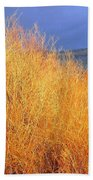 Winter Willows Beach Towel