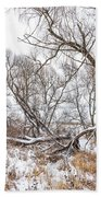 Winter Woods On A Stormy Day 2 Beach Towel