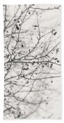 Winter's Berries In Black And White Beach Towel