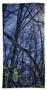 Wintersun Beach Towel