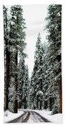 Wintry Forest Drive Beach Towel