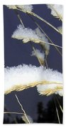 Wintry Wild Oats Beach Towel