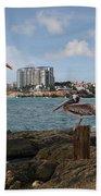 Wip- Pelican 00 Beach Towel