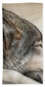 Wolf Nap Beach Towel