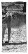 Wolf Pride Beach Towel