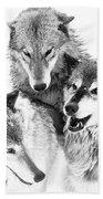Wolf Triplets Beach Towel