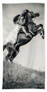 Woman In Dress Riding Chestnut Black Rearing Stallion Beach Towel