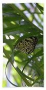 Wonderful Look At A Tree Nymph Butterfly In Foliage Beach Towel