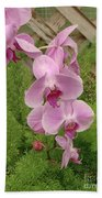 Wonderful Orchid Beach Towel