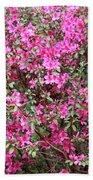 Wonderful Pink Azaleas Beach Sheet