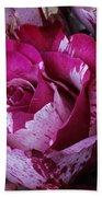 Wonderful Pink Red Rose Beach Towel