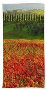 Wonderful Tuscany, Italy - 07  Beach Towel