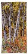 Wonderful Woods Wonderland Beach Towel