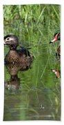 Wood Duck Couple Beach Towel