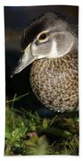 Wood Duck Female Beach Towel