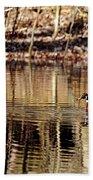Wood Ducks Enjoying The Pond Beach Towel