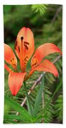 Wood Lily Also Called Prairie Lily Or Western Red Lily Beach Towel
