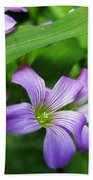 Wood Sorrel Beach Towel
