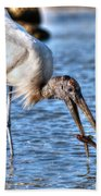 Wood Storks Breakfast Lunch And Dinner Beach Towel
