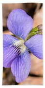 Wood Violet - Full View Beach Towel