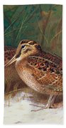 Woodcock In The Undergrowth Beach Towel