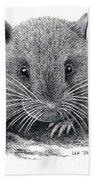 Woodland Jumping Mouse Beach Sheet