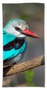 Woodland Kingfisher Halcyon Beach Towel