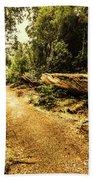 Woodland Nature Walk Beach Towel