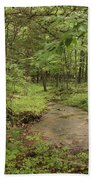 Woodland Strem Beach Towel