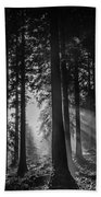 Woodland Walks Silver Rays B/w Beach Towel
