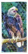 Woodlands Nature Station Beach Towel