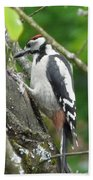 Woodpecker Beach Towel