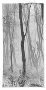 Woods In Mist, Stagshaw Common Beach Towel