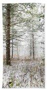 Woods In Winter At Retzer Nature Center  Beach Towel