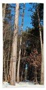 Woods In Winter Beach Towel