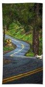 Woods Road 1 - Summer Beach Towel