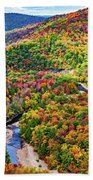 Worlds End State Park Lookout 3 - Paint Beach Towel