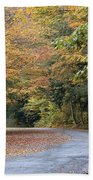 Worlds Ends State Park Road Beach Towel