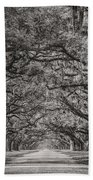 Wormsloe Plantation Beach Towel