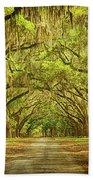 Wormsloe Plantation Oaks Beach Towel