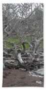 Wrack And Driftwood Beach Towel