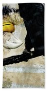 Wreathed Hornbill Perching Against Vintage Concrete Wall Backgro Beach Towel