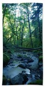 Wyeth Creek Beach Towel