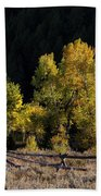 Wyoming Autumn Color One Beach Towel