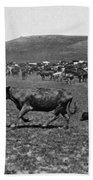 Wyoming: Cowboys, C1890 Beach Towel
